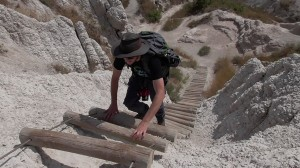 Badlands ladder